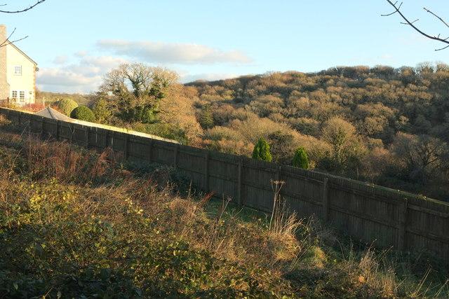 Edge of churchyard, Blisland
