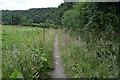 SX0071 : Cornwall : Footpath by Lewis Clarke