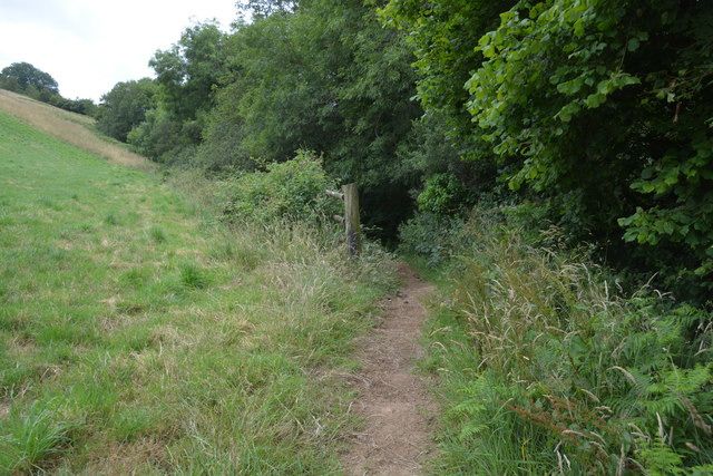 Cornwall : Grassy Path