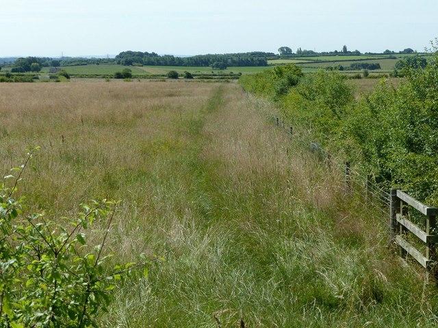 Field footpath near Smalley