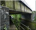 TF6114 : Railway bridge crossing the River Nar by Mat Fascione