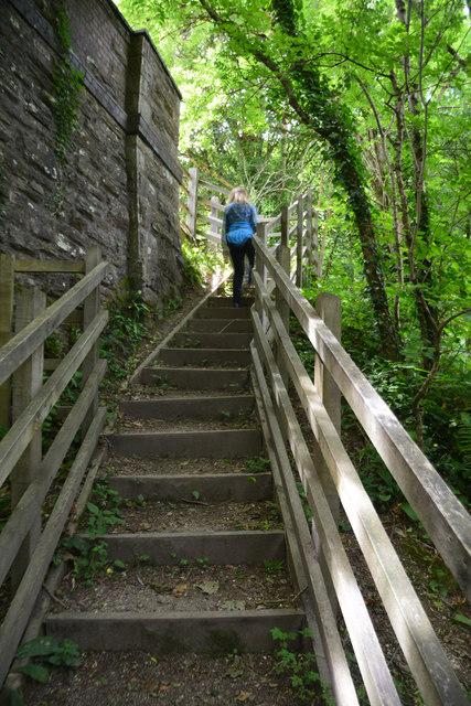 Cornwall : Steps