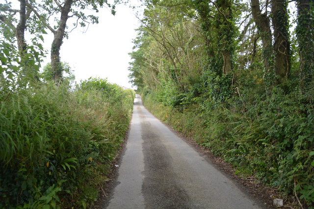 Cornwall : Country Lane