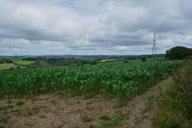 Cornwall : Countryside Scenery