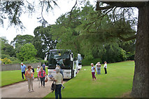 SX0371 : Cornwall : Pencarrow Gardens by Lewis Clarke