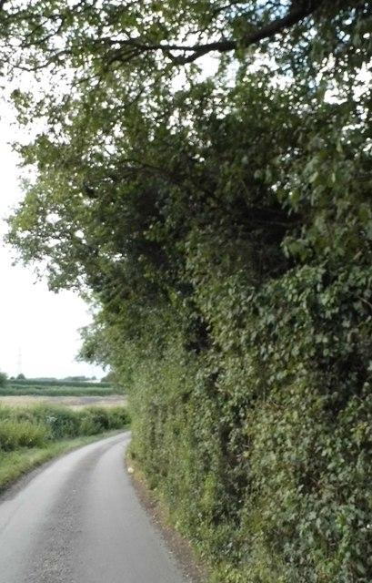 Road entering Trowley Bottom