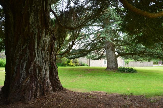 Cornwall : Pencarrow Gardens