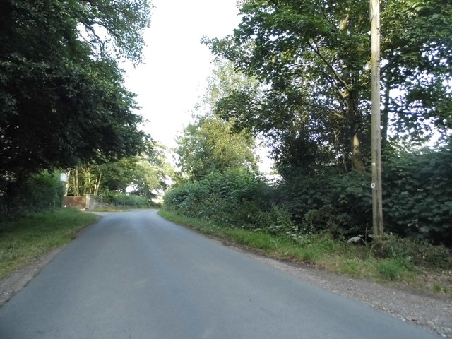 Gaddesden Lane, Cupid Green