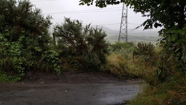 Swansea : Country Lane
