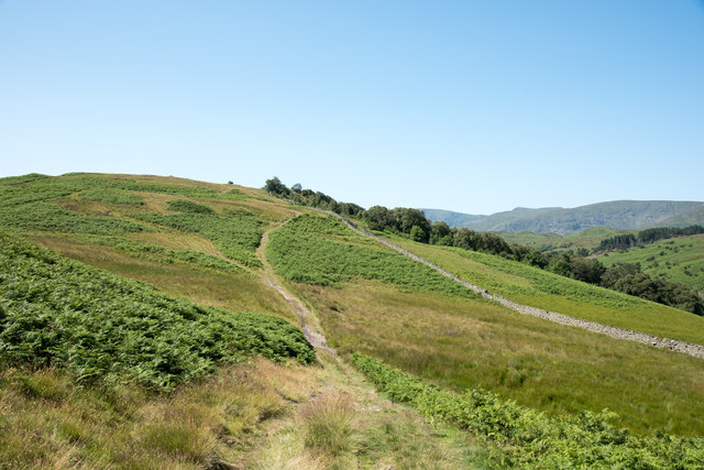Rough hill track above the Naddle Valley