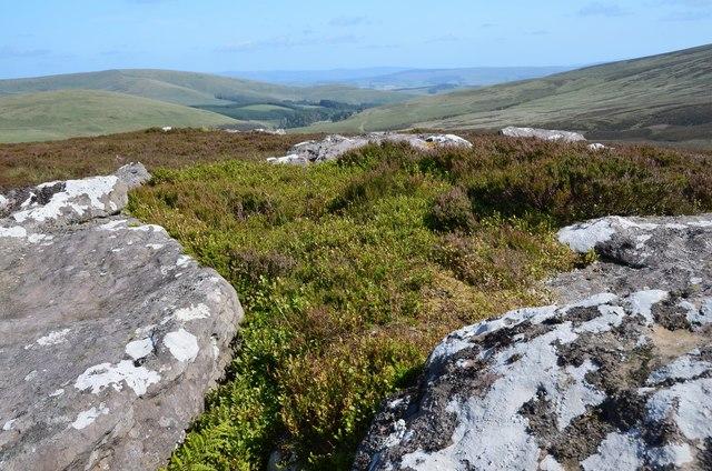 Summit of White Craig Hill