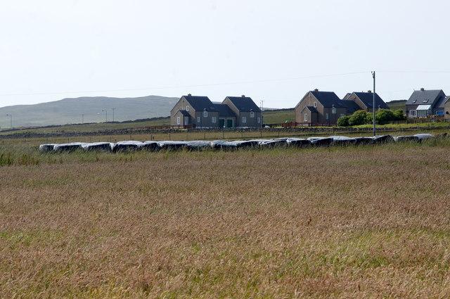 Silage bales at Baltasound