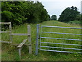 TF6115 : Gate and stile along the Nar Valley Way by Mat Fascione
