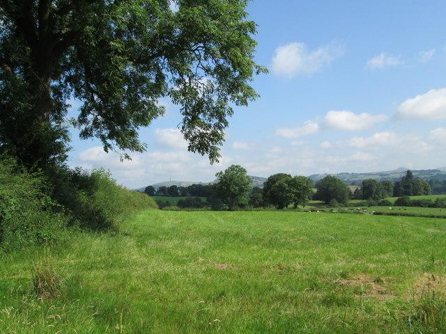 Field near Ryecroft Gate