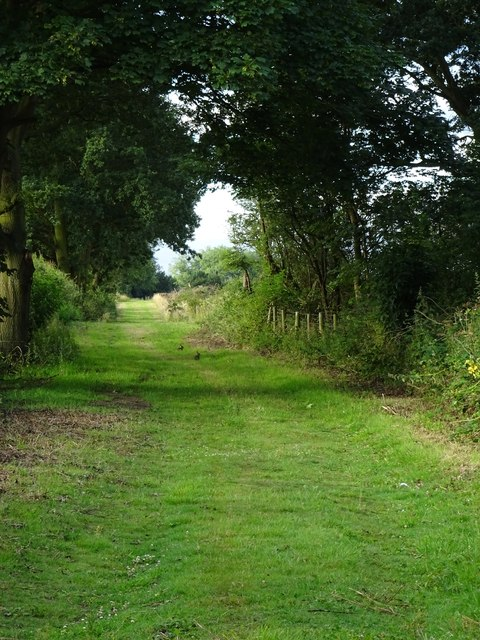 Track off Tindale Bank Rd near Westwoodside North Lincolnshire