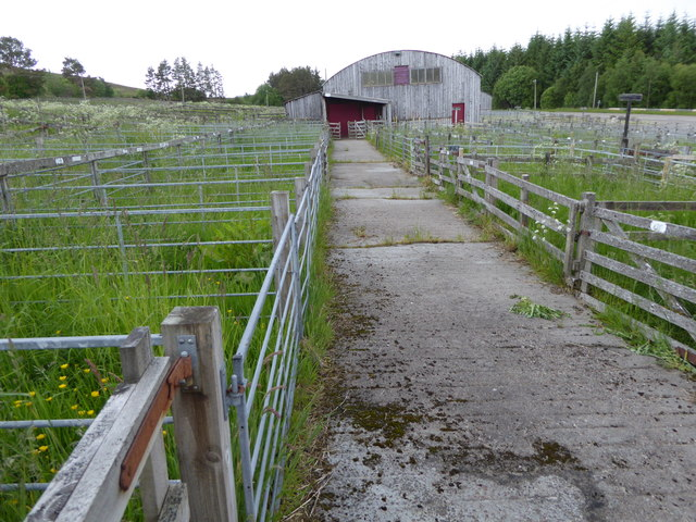 Lairg Auction Mart