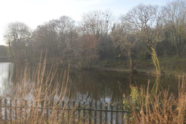 Lake near Tiverton Parkway Station