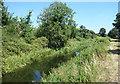 TQ0974 : The Duke of Northumberland's River by Des Blenkinsopp