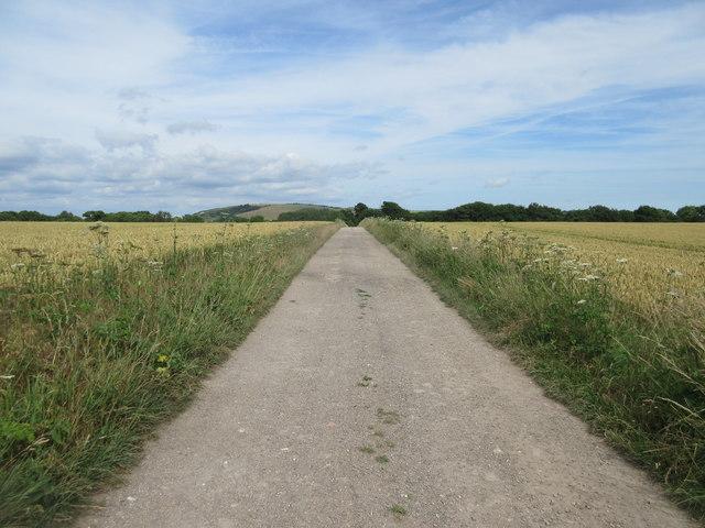 Farm track to Highden Barn