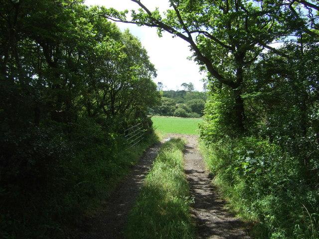 Farm track off the B3293
