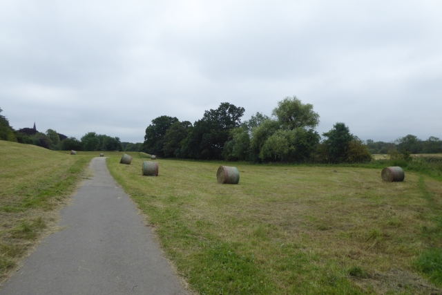 Bales beside the path