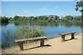 TQ0872 : Benches by the Lake by Des Blenkinsopp