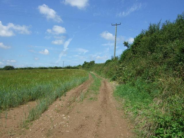 Farm track near Gweek