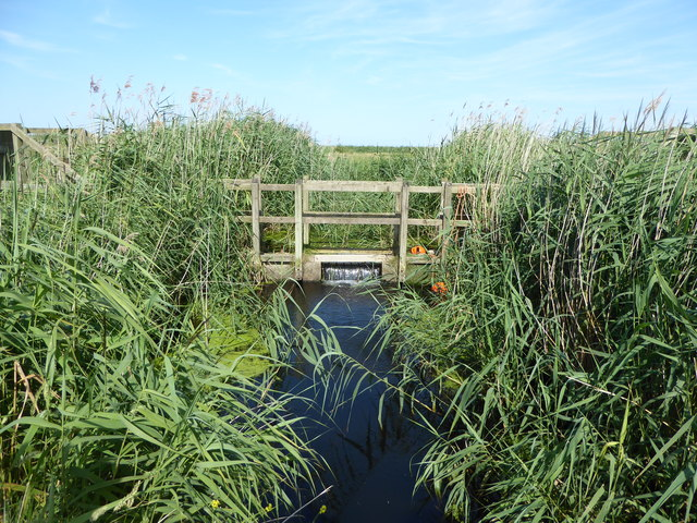 Sluice on the marshes
