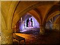 SU3226 : Gruffalo in the Cellarium by David Dixon