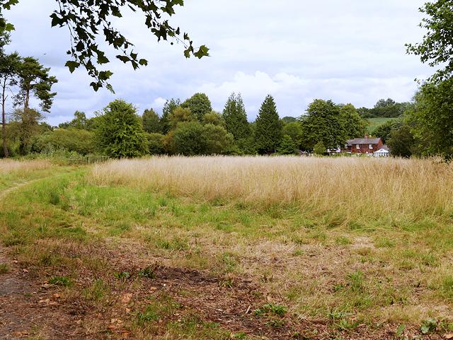 Field North of Mottisfont Lane