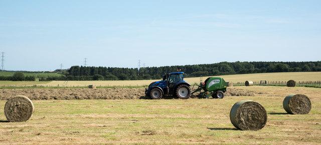 Grass harvesting near to Brougham