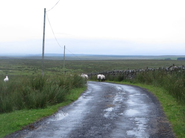 Country road approaching Burnhead Moss