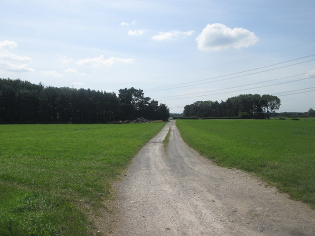 Footpath towards Keeper's Plantation and Haverwits Cottages