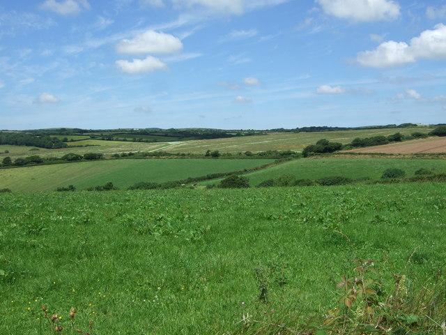 Fields near Kestle Dee