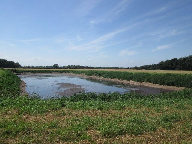 Slurry pond at Wood Closes