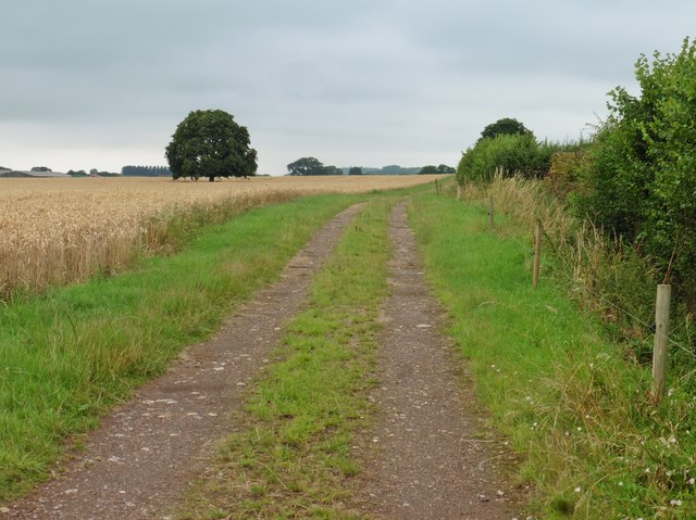 Track to Lower Ivy Thorn Farm