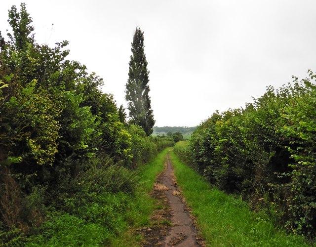Disused farm road near Ivy Thorn Manor