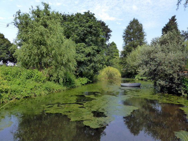 Lake at Beth Chatto Gardens