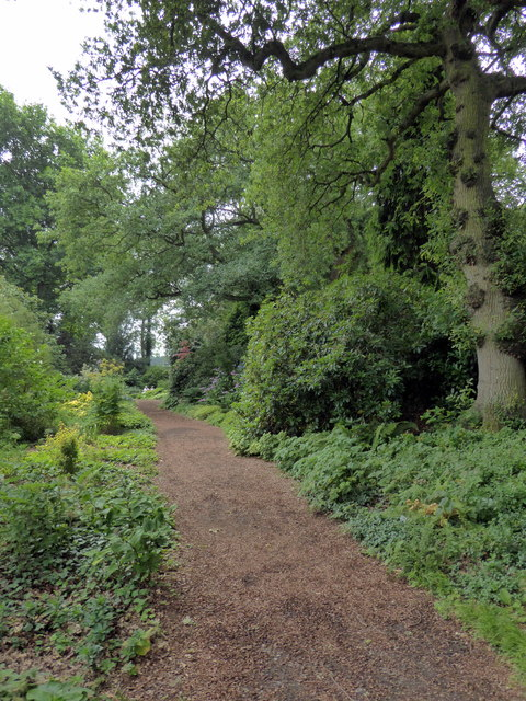 Path in Beth Chatto Gardens