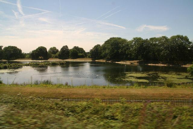 Kempton Park, from the railway