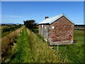 C6429 : Grass pathway, Carrowmuddle by Kenneth  Allen