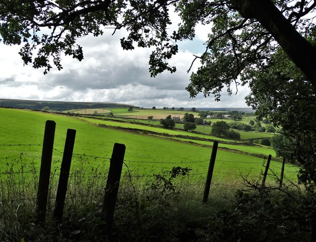 View to High Farm from Riggs Low Road