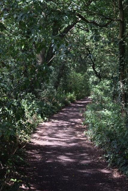 Byway towards Pannells Ash Farm