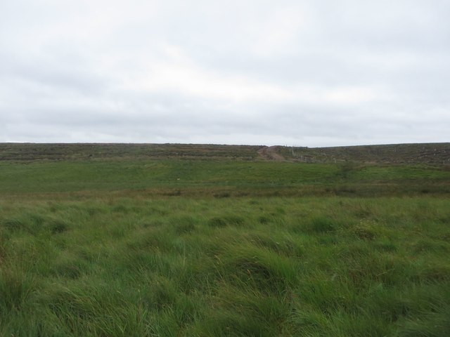 Grassland north of Brock's Hill