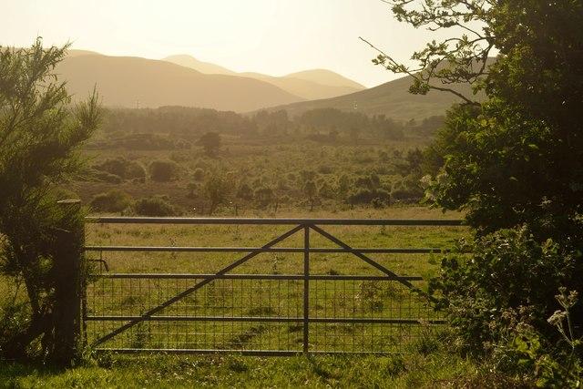 Field Gate at Badnellan, Sutherland