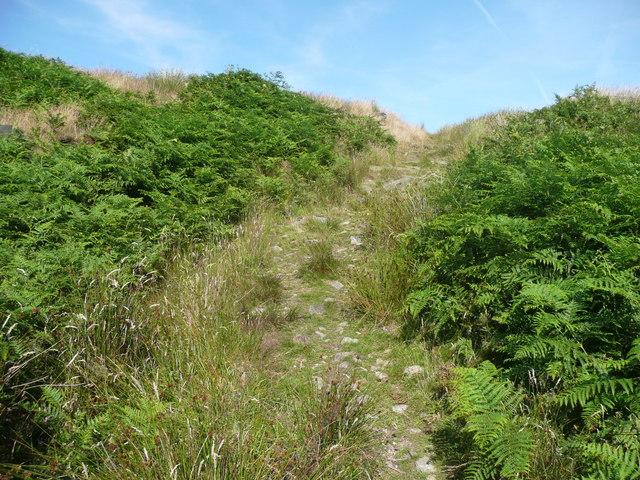 Footpath on Chelburn Moor