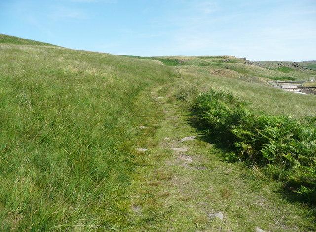 The Pennine Bridleway, Chelburn Moor
