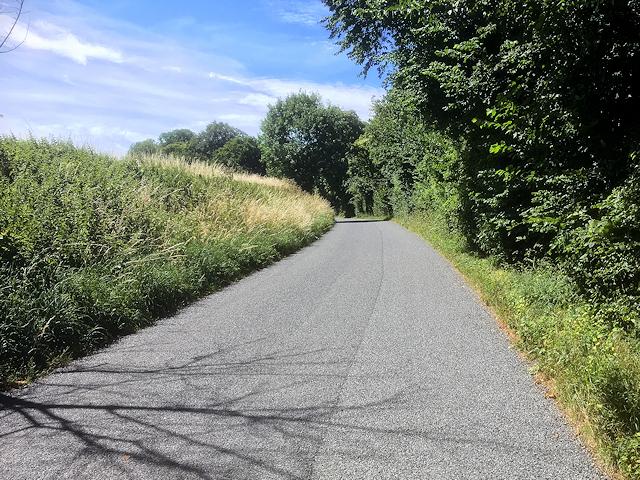 Avington, The Road to Avington Manor Farm