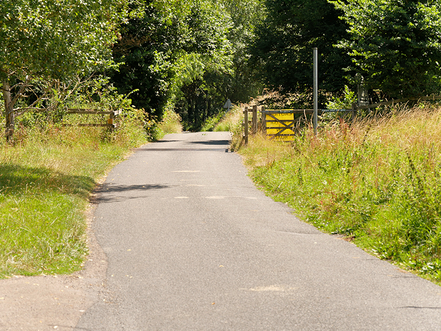 Cattle Grid in Avington Country Park