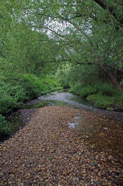 Shingle Strand in The River Pool